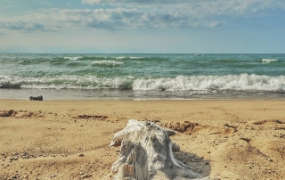 Indiana Dunes National Park | Jypsy Threads