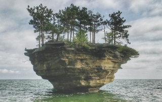 turnip rock jypsy threads